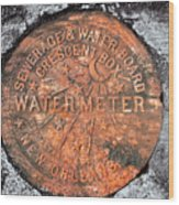 New Orleans Water Meter Cover 9 Months After Katrina Wood Print