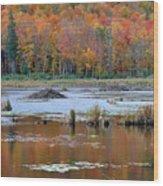 Gatineau Fall Wood Print