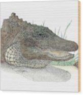 Gator Wood Print