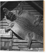 Gator Hide Wood Print