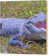 Gator Laugh Wood Print