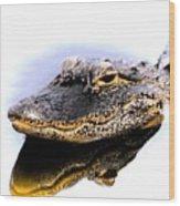 Gator Profile Reflection Wood Print