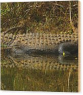 Gator Relection Wood Print