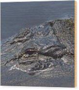 Gator - Too Close Wood Print