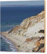 Gay Head Cliffs And Beach Wood Print