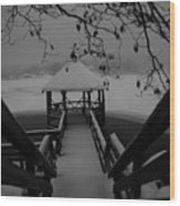 Gazebo-1 Wood Print