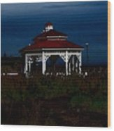 Gazebo  22 Fletcher Lake Wood Print