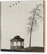 Gazebo And Geese Wood Print