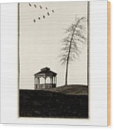 Gazebo And Geese Poster Wood Print