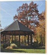 Gazebo At North Ridgeville - Autumn Wood Print