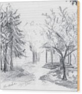 Gazebo Wood Print