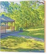 Gazebo On Onion Creek Wood Print