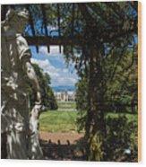 Gazebo With A View Wood Print