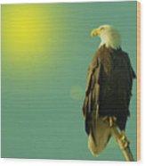Gazing Sunward Wood Print