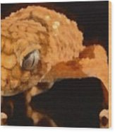 Gecko - Id 16218-130703-9950 Wood Print
