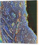 Gecko Wood Print