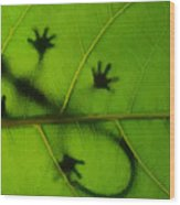 Gecko On A Leaf Wood Print
