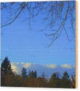 Geese Across The Sky Wood Print