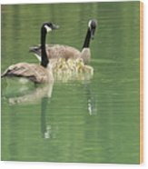 Geese And Babies Wood Print