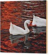 Geese At Lady Bird Lake Wood Print by Mark Weaver