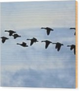 Geese Flying South Wood Print