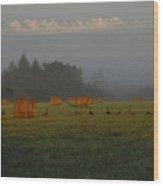 Geese In A Foggy Hay Field Wood Print