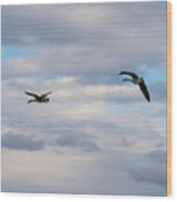 Geese In The Clouds Wood Print