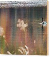 Geese Lake Fall Wood Print