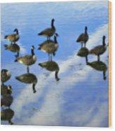Geese Lake Reflections  Wood Print