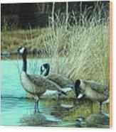 Geese On Watch Wood Print