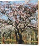 Geese Under Flowering Tree Wood Print