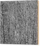 Gehiegi Wood Print