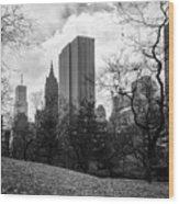 General Motors Building In Autumn, New York Wood Print