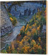 Genesee River Gorge II Wood Print