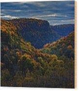 Genesee River Gorge Wood Print