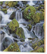 Gentle Cascade Wood Print