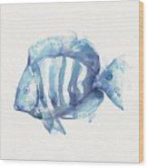 Gentle Fish Wood Print