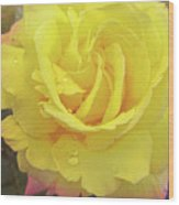 Suave Amarillo Wood Print