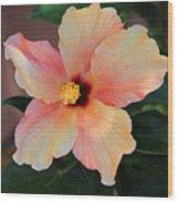 Gentle Hibiscus Wood Print