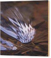 Gentle Ripple In River-2 Wood Print