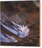Gentle Ripple In River Wood Print