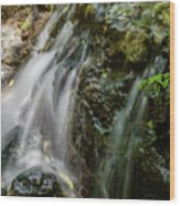 Gentle Spring Fed Waterfall Wood Print