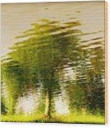Gentle Sun  Wood Print