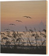 Gentle Sunrise Wood Print