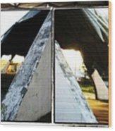 Geodesic Jux Wood Print