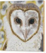 Geometric Barn Owl Wood Print
