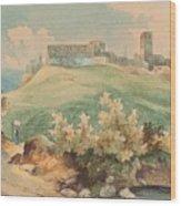 Georg Geyer 1823   Wien   1912   Burg Brandzoll In Tirol Wood Print