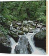 Georgia Mountian Stream Wood Print