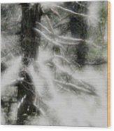 Georgia Pines Wood Print