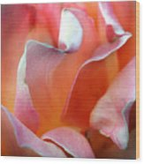 Georgias Rose Wood Print